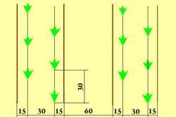 Utilaje agricole diferite tipuri de trandafiri