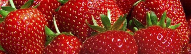 Recoltă bogată de căpșuni, cultivate în grădina sa