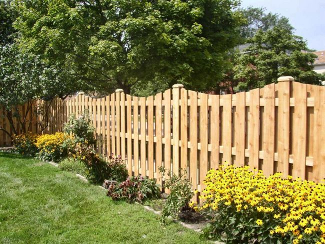 linie de gard din lemn, artistul
