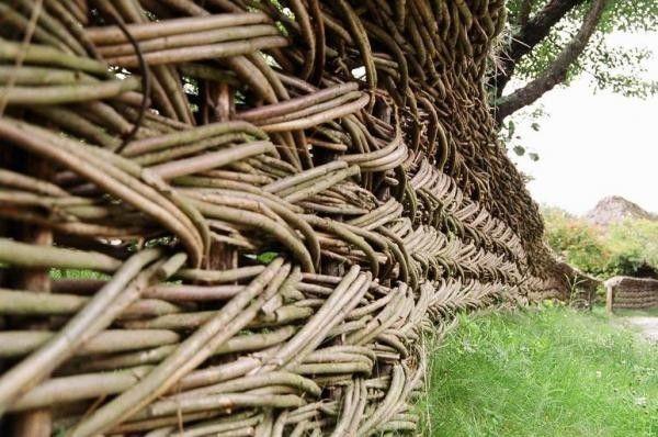 Willow gard - cel mai vechi gard cu proprietăți magice