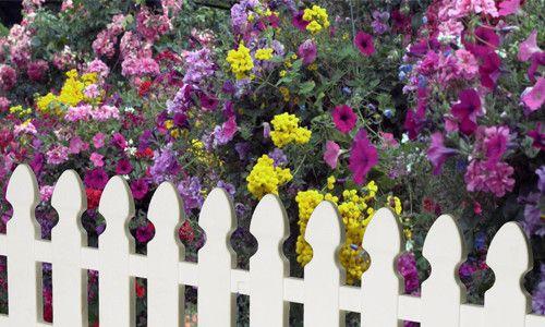 Cum sa faci propriul gard pentru flowerbeds