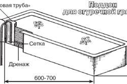 Как в теплице производить мульчирование огурцов?