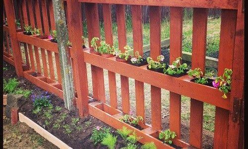 Gard frumos din tăvi cu propriile lor mâini